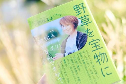 book kotsuri